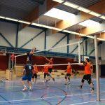 Volleyball_Herren